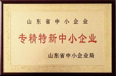 山东省专精特新中小企业